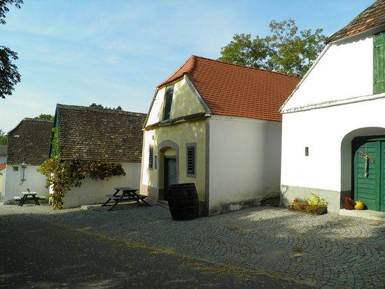 Mailberg, النمسا: Kellergasse Mailberg