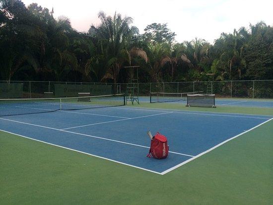 tennispartner