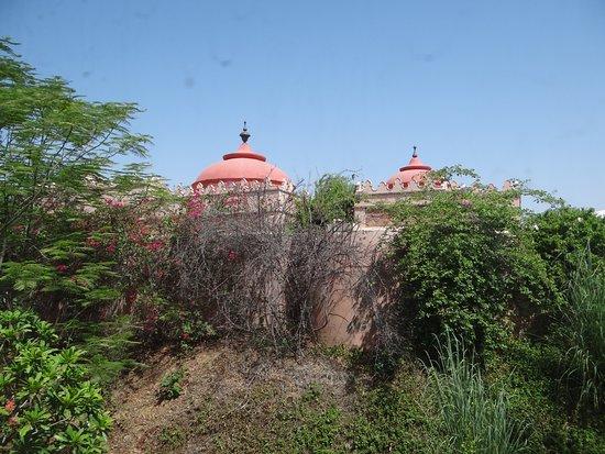Фотография Tree of Life Resort & Spa Jaipur
