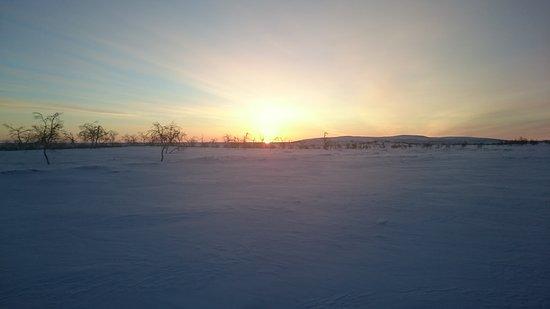 Davvi Arctic Lodge: DSC_0285_large.jpg
