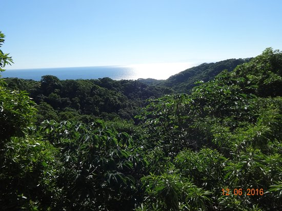 Roatan Canopy Tour: View from the waiting area. Beautiful country.