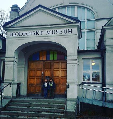 أوبسالا, السويد: IMG_20161103_173325_large.jpg