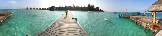 Maayafushi Island: photo1.jpg
