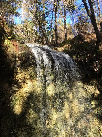 Chipley, FL: Gorgeous!  Water was abundant and the falls were gorgeous!