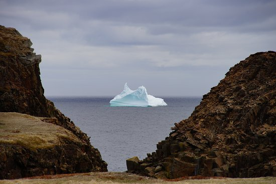 View of Iceberg from the Elliston Puffin Site