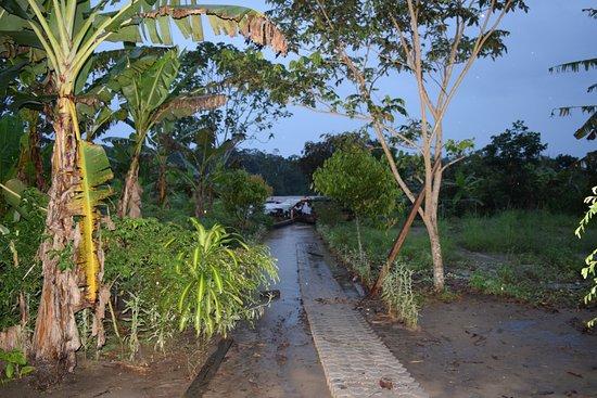 Tena, Ecuador: Comunidad Shiripuno