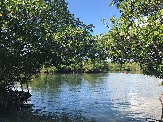 North Miami Beach, فلوريدا: Oleta River State Park