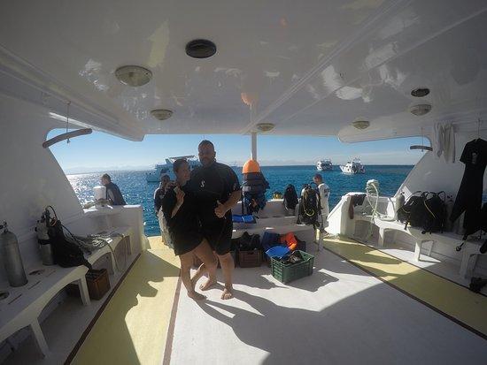 Manta Ray Dive Hurghada