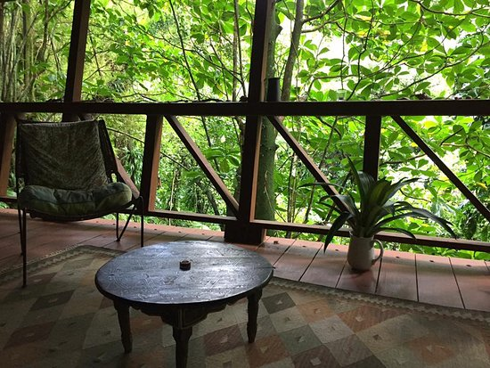 Cocoa Cottages: Treehouse Living Room