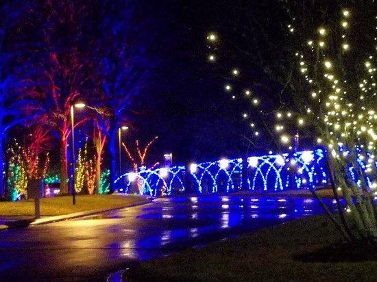 The North Carolina Arboretum: photo1.jpg