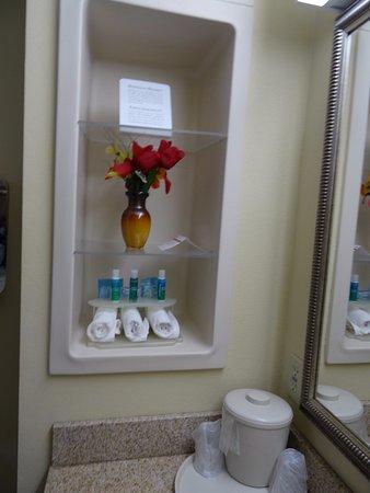Holiday Inn Express Hotel & Suites Biloxi- Ocean Springs: Bathroom