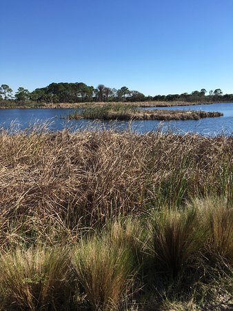 Osprey, FL: photo0.jpg