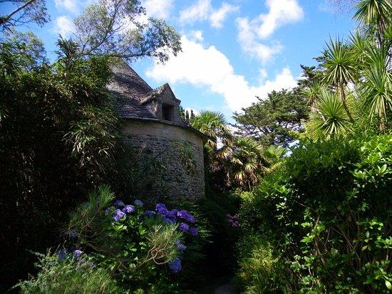 Picture of jardin botanique de vauville for Camping le jardin botanique limeray