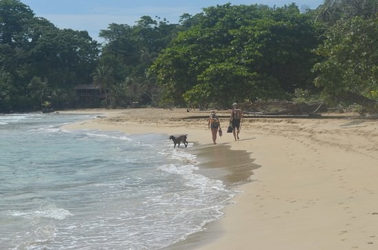 Garden of Eden Inn: A walk to Polo beach