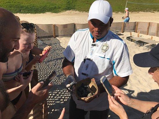 Hilton Los Cabos Beach & Golf Resort: photo4.jpg