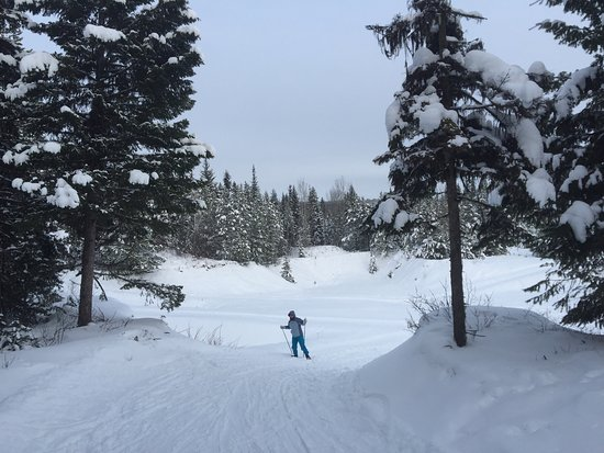Caledonia Nordic Ski Club: photo1.jpg