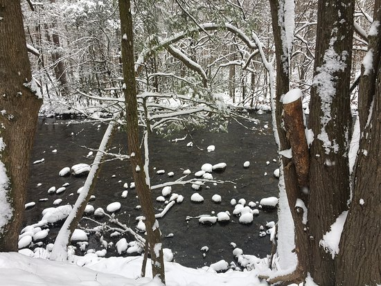 Cosby, TN: Snow covered creek