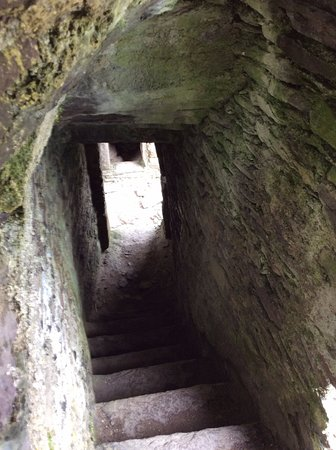 Ballinskelligs, Irlanda: Another stairway in the Castle