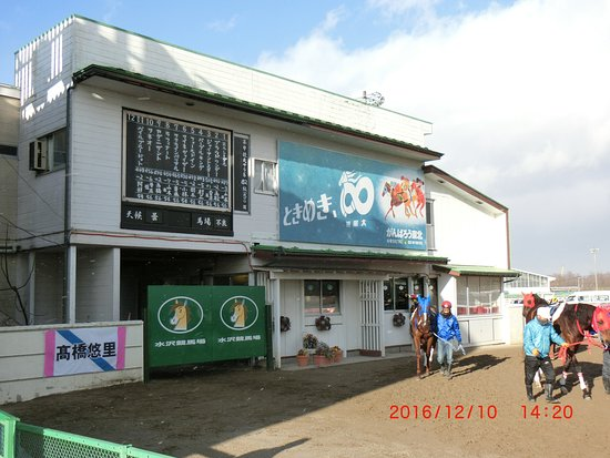 Mizusawa Horse Tracks