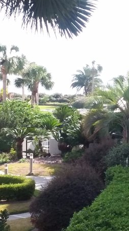 Beach Club at St. Simons: View from 221 looking towards the beach (sea view)