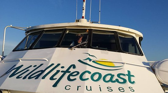 Cowes, Australia: Captain Brett of Wildlifecoast Cruises