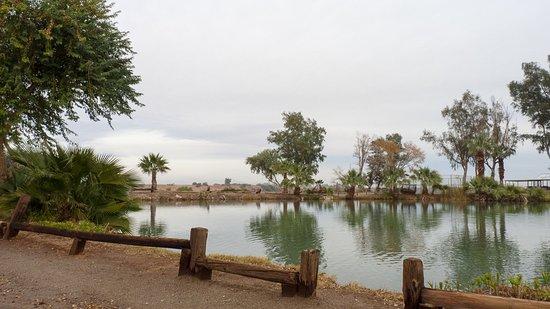 เอลเซนโตร, แคลิฟอร์เนีย: Lakeside
