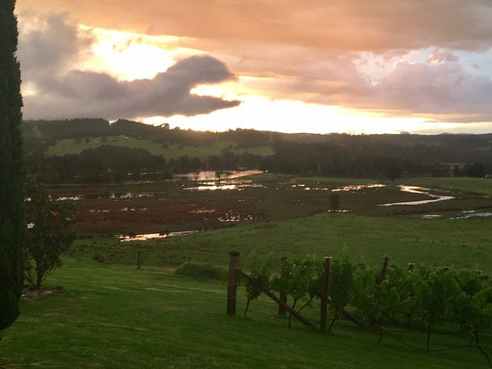 Ulladulla, Austrália: Photo 1 of the terrine - good flavour etc but burnt edge on toast;  view after storm