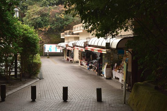 Mt. Shiroyama: 駐車場近くには土産物店もあります