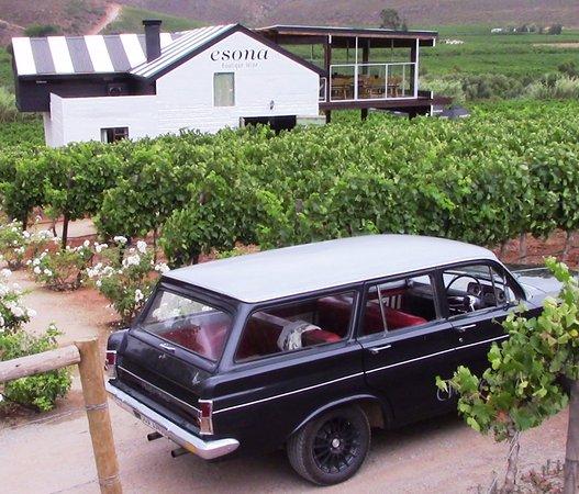 Robertson & McGregor Wine Tasting Tours