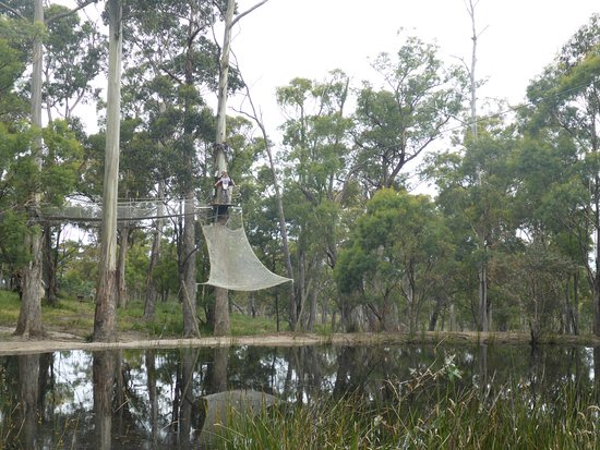 Little Swanport, Australië: Flying Fox