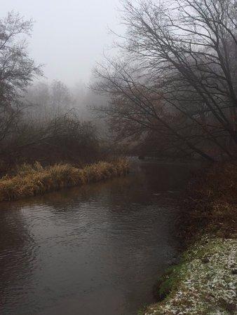 Meanderende Swalm in het Groenewoud