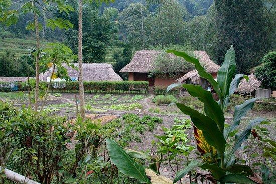 Ecolodge Panhou Village Photo