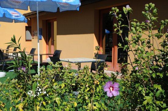 Viriat, Francia: La Terrasse