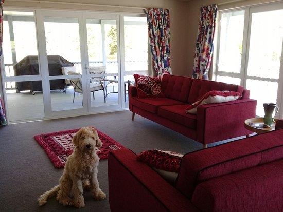 Pelorus River Views Bed & Breakfast: Guest lounge