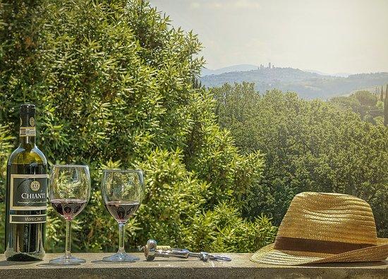 Agriturismo Renai e Monte: Vista su San Gimignano