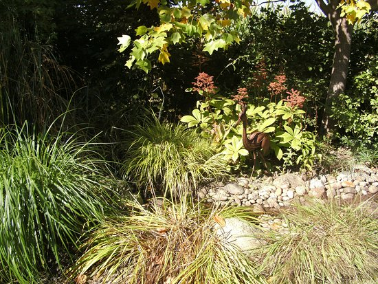 Jardin remarquable plobsheim frankrike omd men for Jardin remarquable