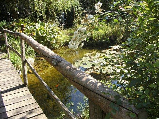Plobsheim, France : Au détour d'un petit pont ou les p'tits poissons nagent.......  nagent.......