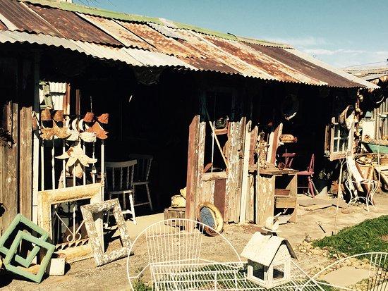 Ficksburg, South Africa: Tea garden