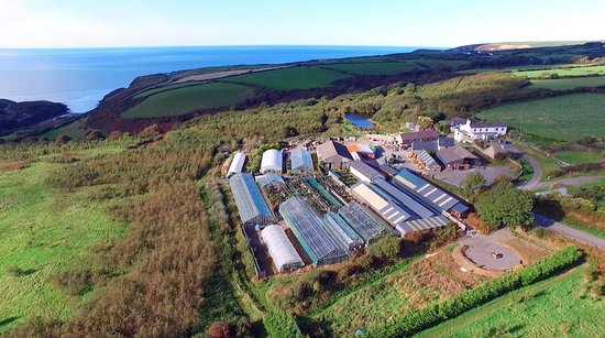 Moylegrove, UK: Penrallt Garden Centre from above