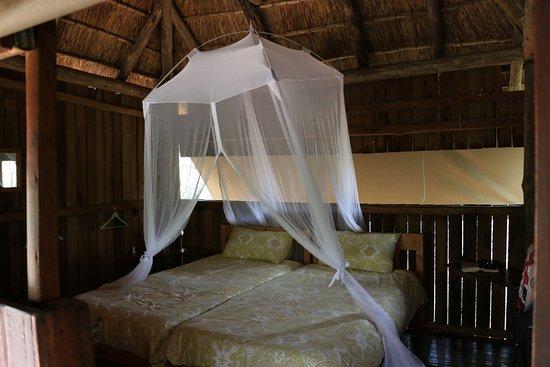 Mosetlha Bush Camp & Eco Lodge: Room