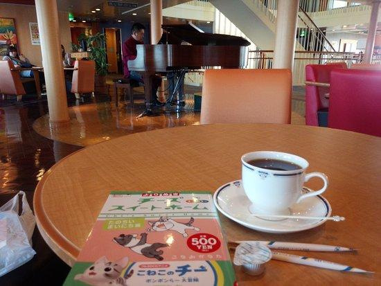 ラウンジショー 河合徹さん - Picture of Taiheiyo Ferry, Nagoya ...