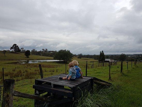 Picton, Australia: 20170105_172221_large.jpg