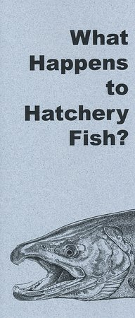 Cascade Locks, Oregón: flier that covers details about hatcheries