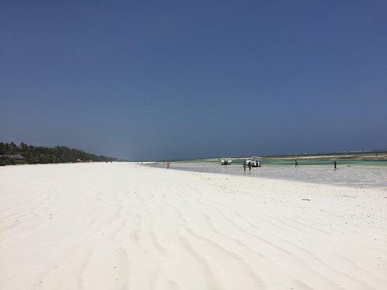 Diani beach umgebung