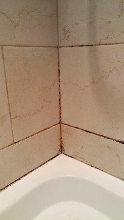 Belgravia Rooms: Angolo doccia ammuffito