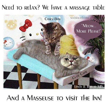 Let Our Shaman Massage Therapist, and our Student Therapists
