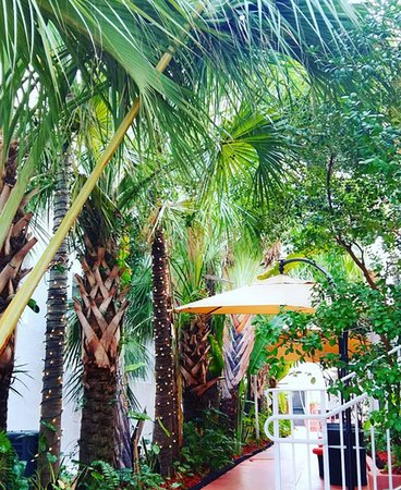 耶爾南部海灘飯店照片