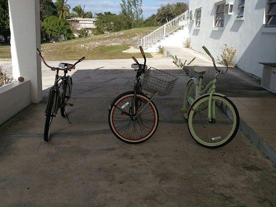 Orange Creek Inn: Le bici a noleggio (6$ l'una al giorno)