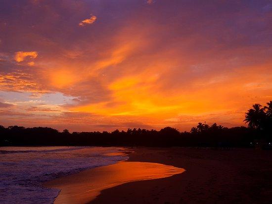 Talalla, Sri Lanka: 20170103_180543_large.jpg