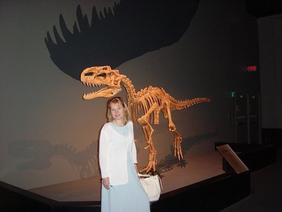 Royal Tyrrell Museum Photo